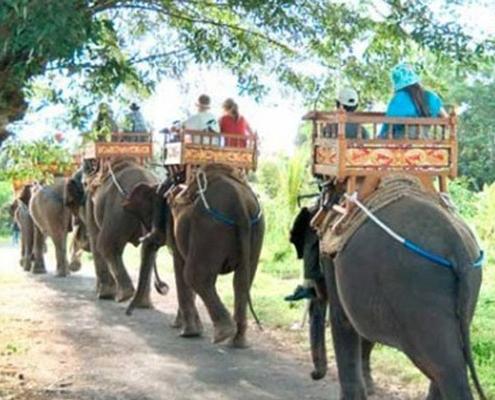 Bali-Elephant-Camp