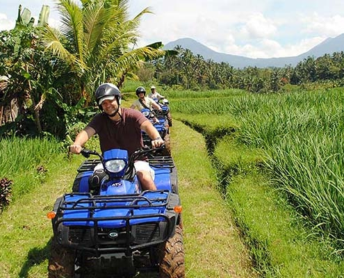 atv-rice-terrace